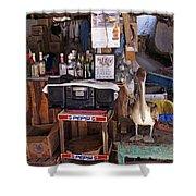 Brown Pelican Visiting Mexican Beach Bar Shower Curtain