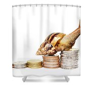 Brown Snail Climbing To The Top Of The Pile Of Coins  Shower Curtain