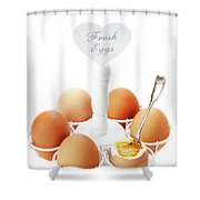 Brown Soft Boiled Eggs  Shower Curtain