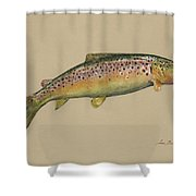 Brown Trout Jumping Shower Curtain