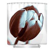 Brown Tulip Shower Curtain