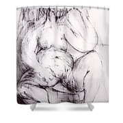 Brownie Sitting Shower Curtain by Robert F Battles