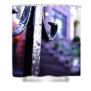 Brownstone 1  Shower Curtain