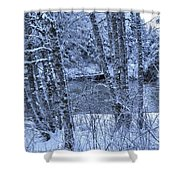 Brrrrr Shower Curtain