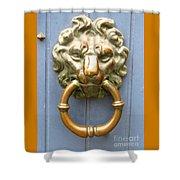 Bruges Detail 3 Shower Curtain