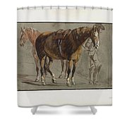 Brun De Versoix Shower Curtain