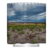Bruneau Dunes Shower Curtain