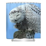 Brunswick Coffee Mug Shower Curtain
