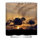 Brush Stroke Shower Curtain