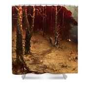 Brushwood Collector Bordering The Woods Shower Curtain