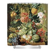 Brussel Fruits 1789 Shower Curtain