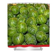 Brussel Sprouts Shower Curtain