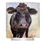 Brutus - Black Angus Cattle Shower Curtain
