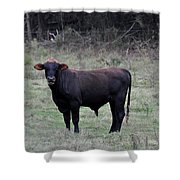 Brutus Shower Curtain