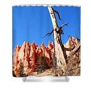Bryce Canyon Lonely Tree Shower Curtain