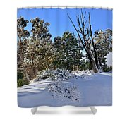 Bryce Canyon Snowfall Shower Curtain