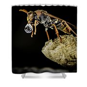 Bubble Blowing Wasp Shower Curtain