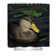 Bubble Duck Shower Curtain