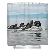 Bubble-net Group With Mountains In Alaska Shower Curtain