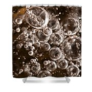 Bubbles Shower Curtain by Anne Gilbert
