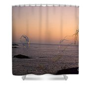 Bubbles On The Beach Shower Curtain