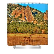 Buck And Flatirons Shower Curtain