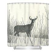 Buck  Shower Curtain
