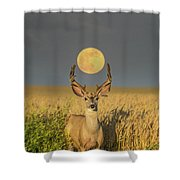 Buck Moon  Shower Curtain