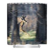 Buck Running Thru The Woods Shower Curtain