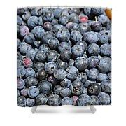 Bucket Of Blueberries Shower Curtain