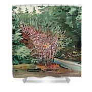 Buckeye And Redwoods Shower Curtain