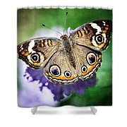 Buckeye Butterfly  Shower Curtain