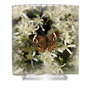 Buckeye On Wildflowers Shower Curtain
