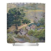 Buckhorn Canyon Shower Curtain