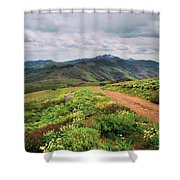 Buckskin Cyn June-3116-r1 Shower Curtain