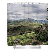 Buckskin Cyn June-3125-r2. Shower Curtain