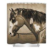 Buckskin War Horse In Sepia Shower Curtain
