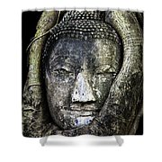Buddha Head In Banyan Tree Shower Curtain