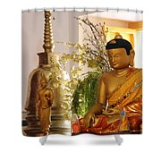 Buddha In India Shower Curtain