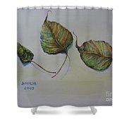 Buddha Leaf 1 Shower Curtain