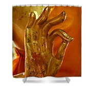 Buddhism Symbols Shower Curtain