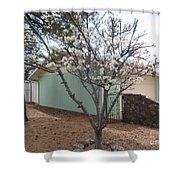 Budding Fruit Tree Shower Curtain
