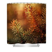 Budding Pine Cone Tree Shower Curtain