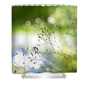 Budding Plant Shower Curtain