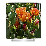 Buds N Blossoms Shower Curtain