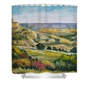 Buena Vista Shower Curtain