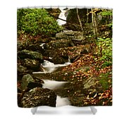 Buff Creek Falls Shower Curtain