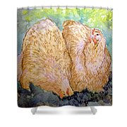 Buff Orpington Hens In The Garden Shower Curtain