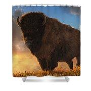 Buffalo At Dawn Shower Curtain