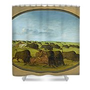 Buffalo Chase With Accidents Shower Curtain